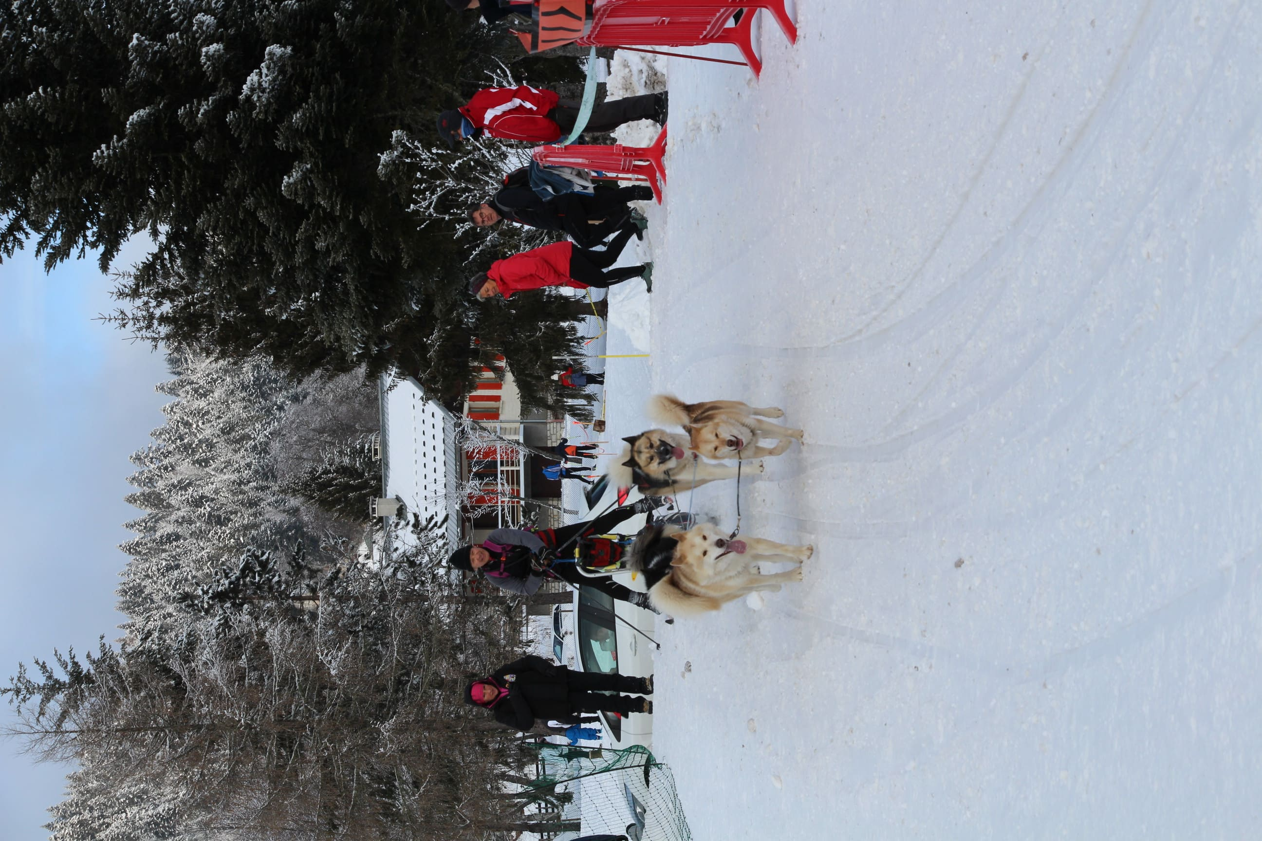 Snowland 2020 LQ (255)