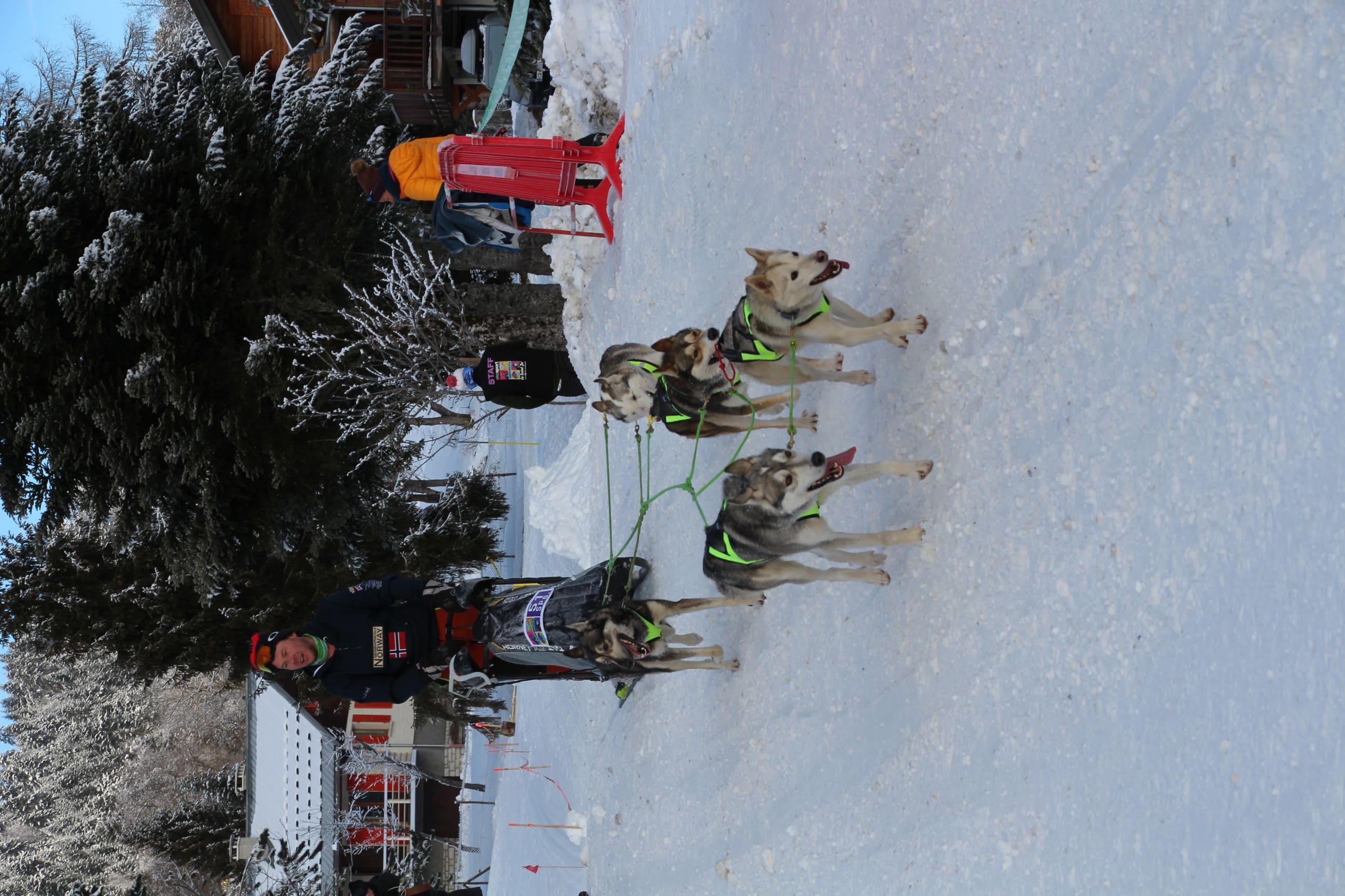 Snowland 2020 LQ (230)