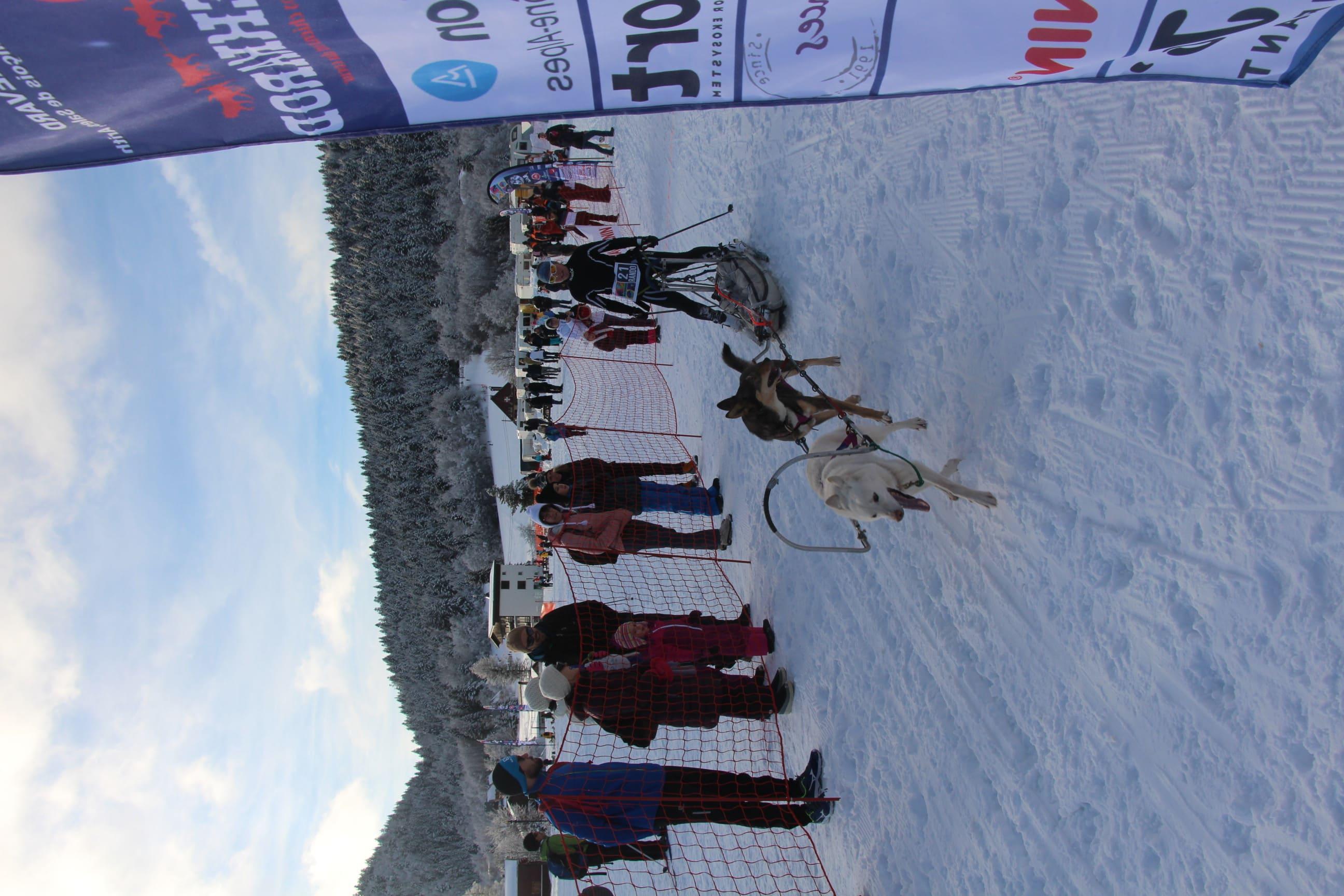 Snowland 2020 LQ (124)