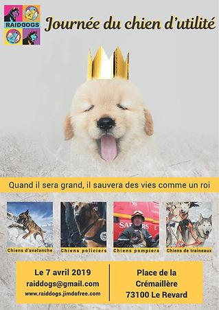 Affiche_Journée_de_chien_d'utilité_201