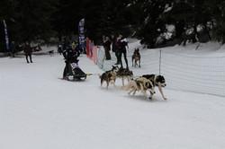 Snowland-2019-LQ 120