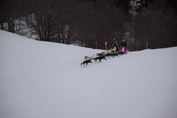Snowland-2019-LQ 225