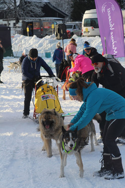 Snowland 2020 LQ (160)
