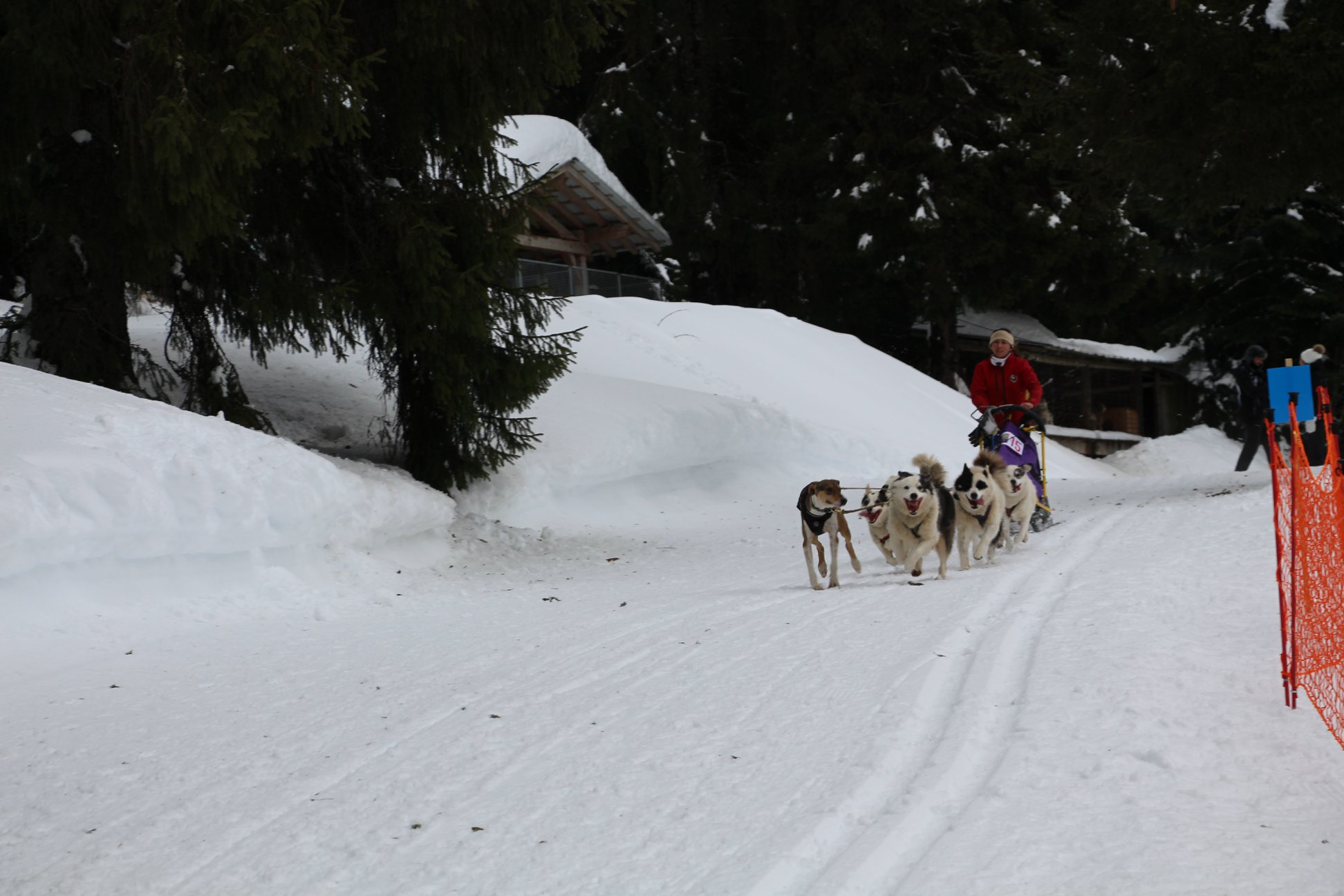 Snowland-2019-LQ 110