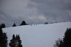Snowland-2019-LQ 008