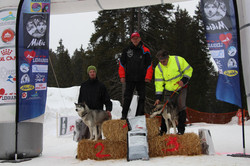 Snowland-2019-LQ 250