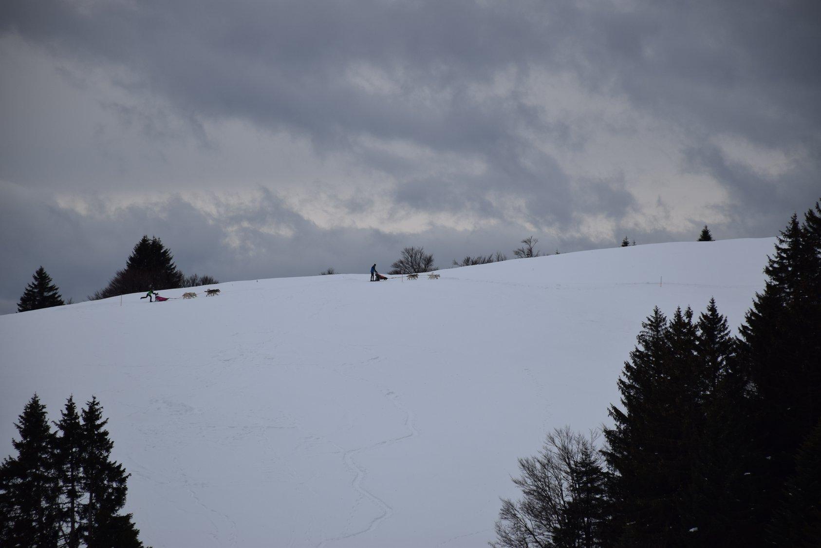 Snowland-2019-LQ 027