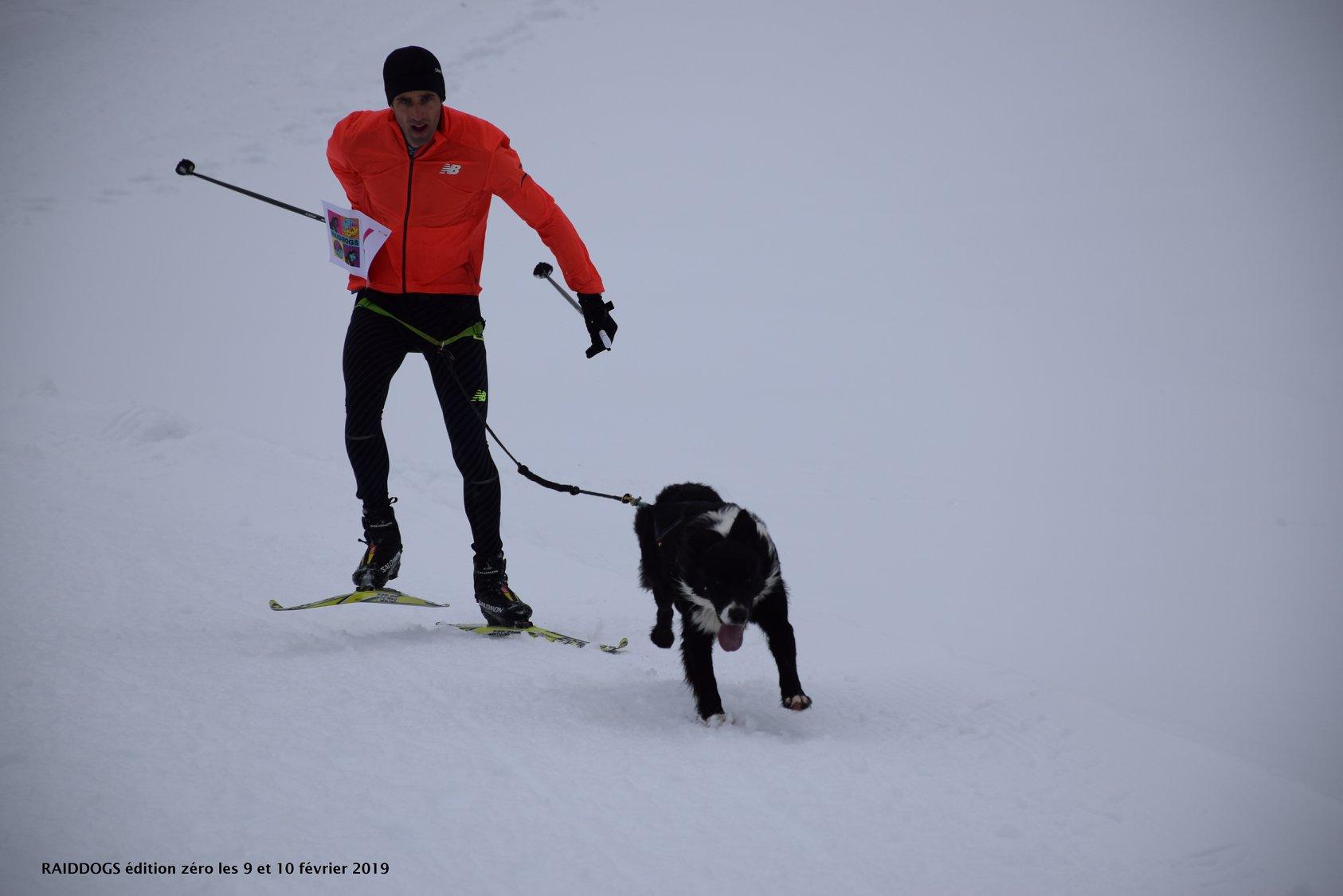 Snowland-2019-LQ 238