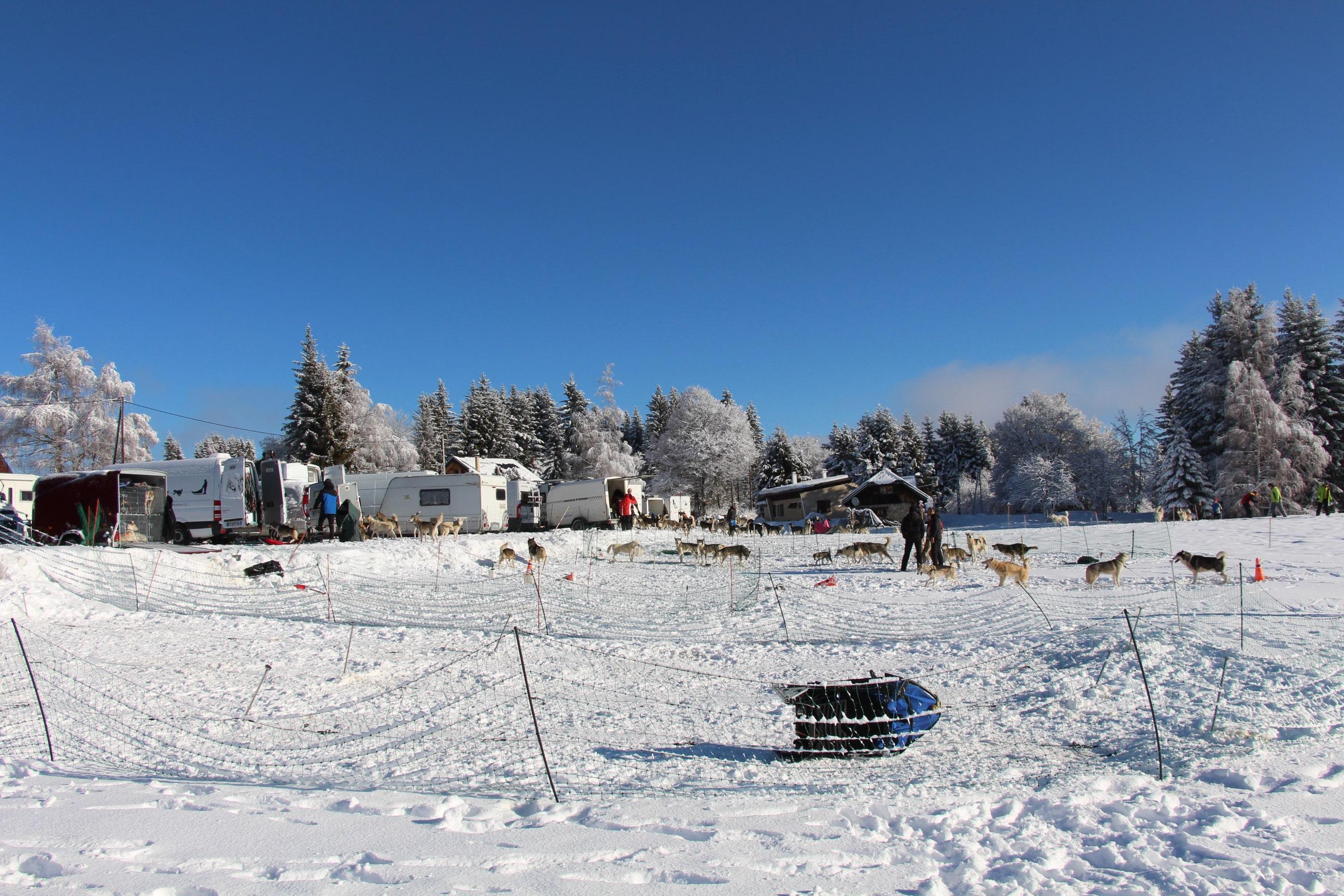 Snowland 2020 LQ (8)