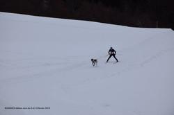 Snowland-2019-LQ 011