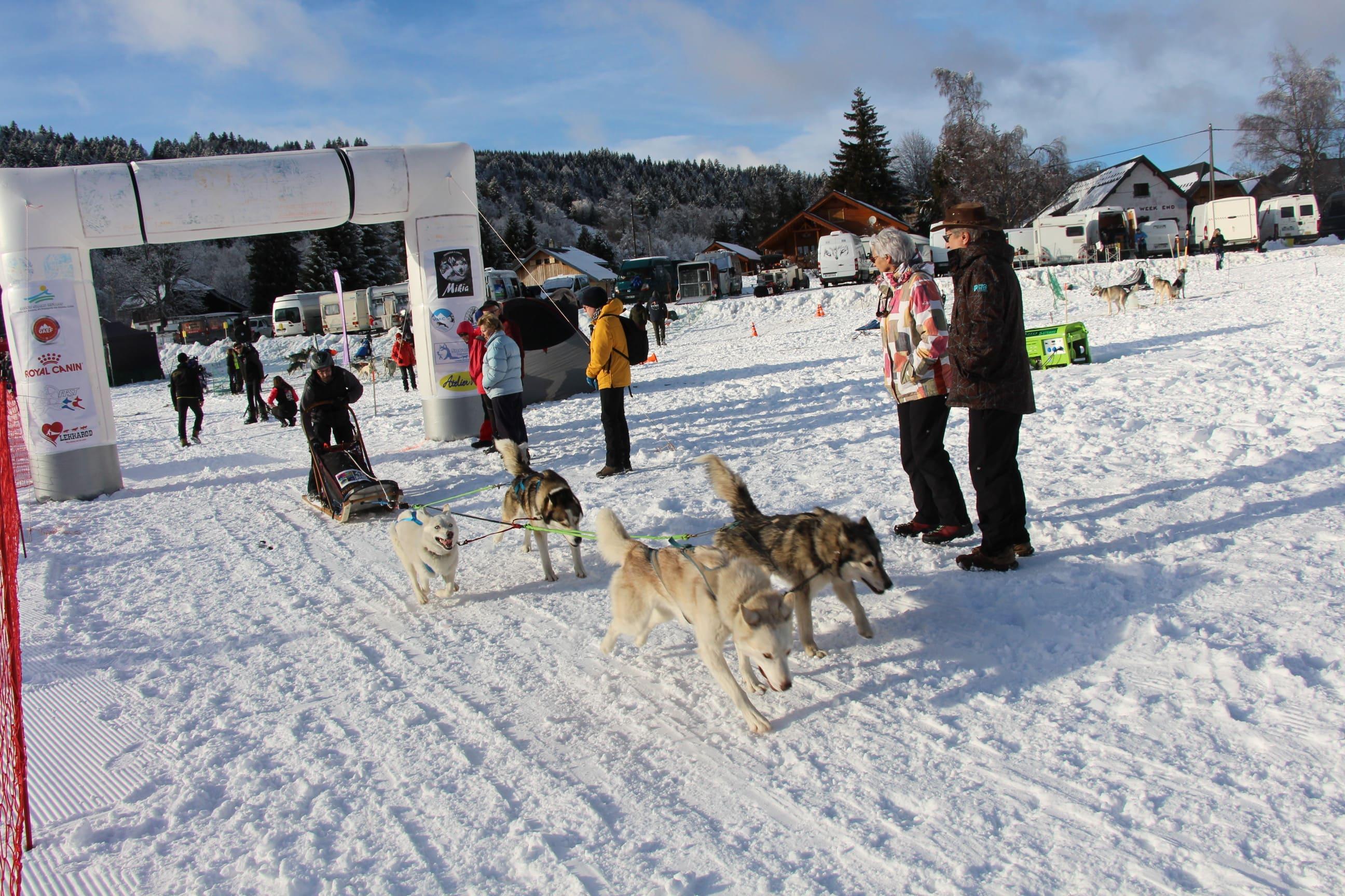 Snowland 2020 LQ (55)