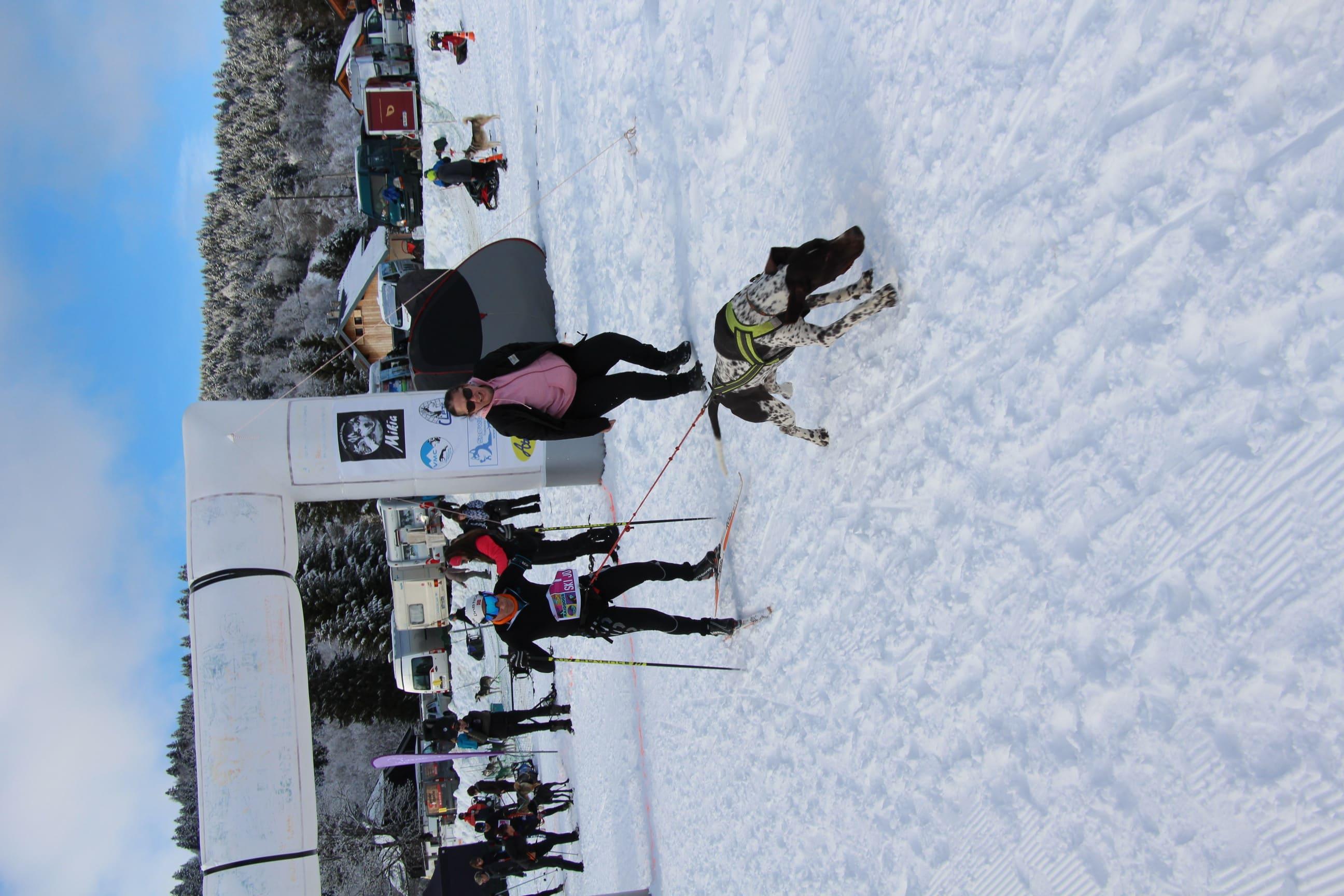 Snowland 2020 LQ (59)