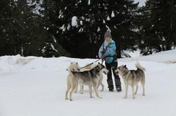 Snowland-2019-LQ 285