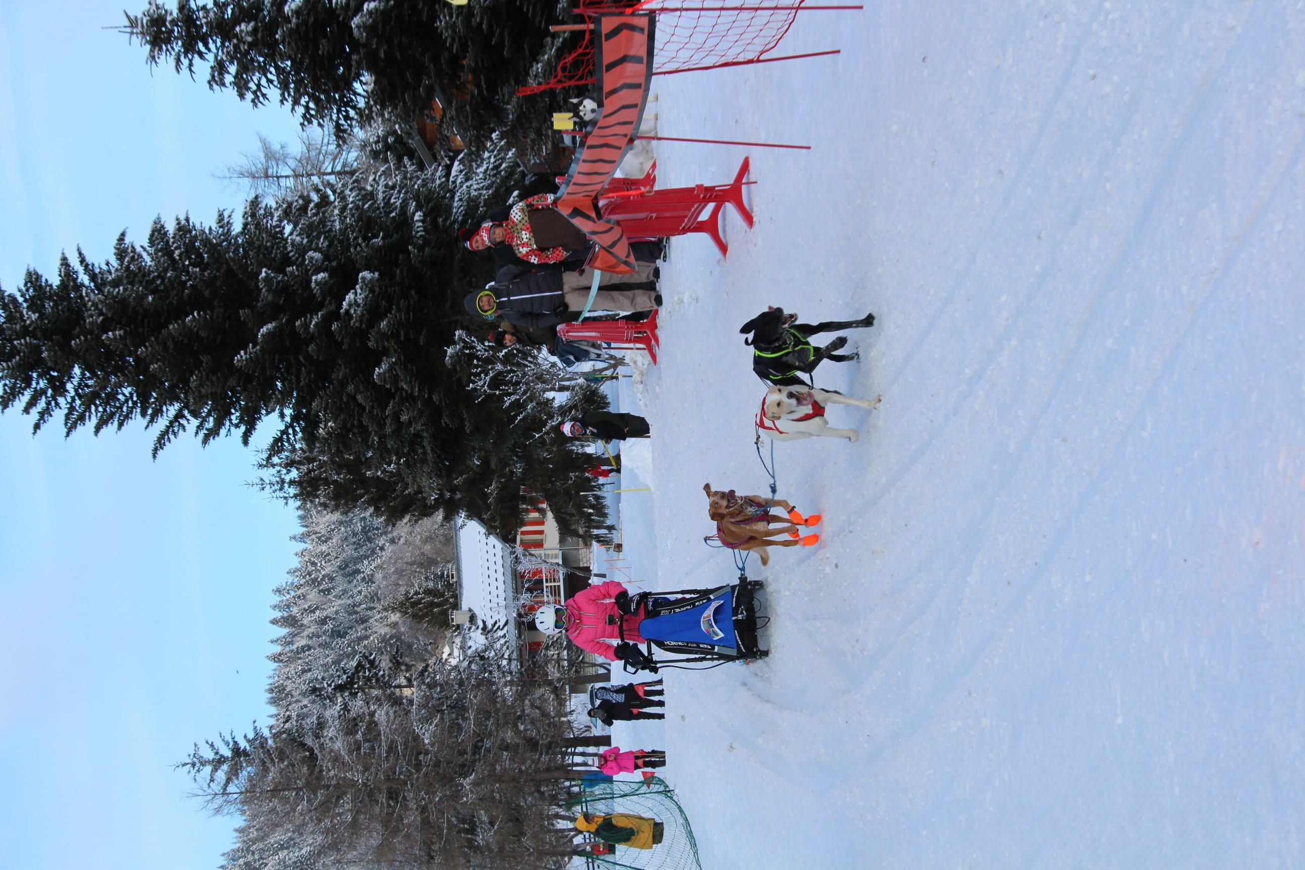 Snowland 2020 LQ (231)