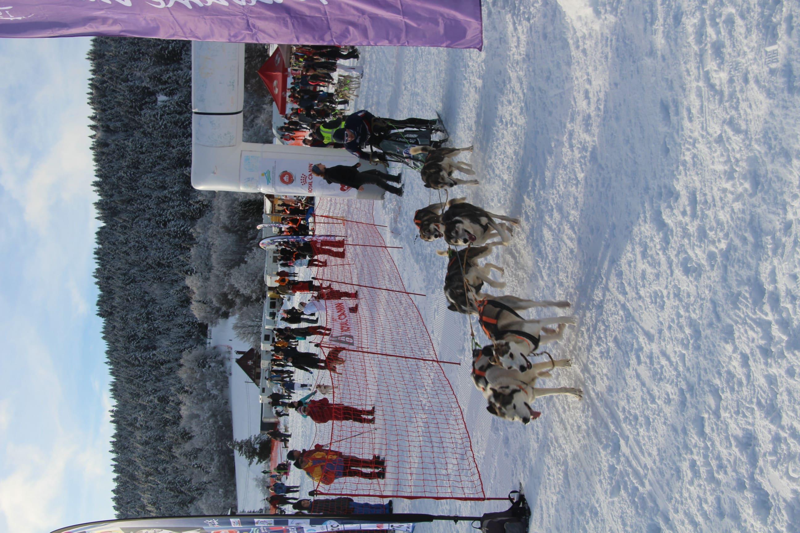 Snowland 2020 LQ (120)