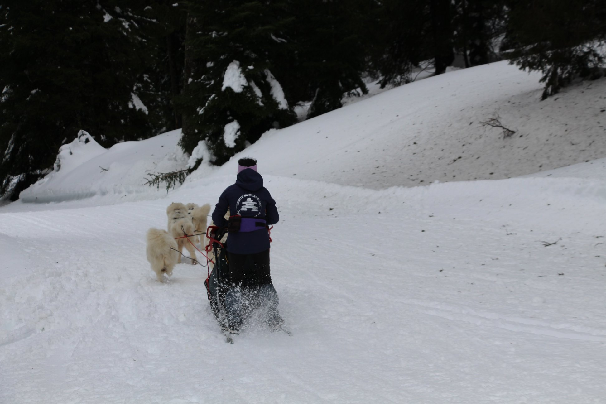 Snowland-2019-LQ 190
