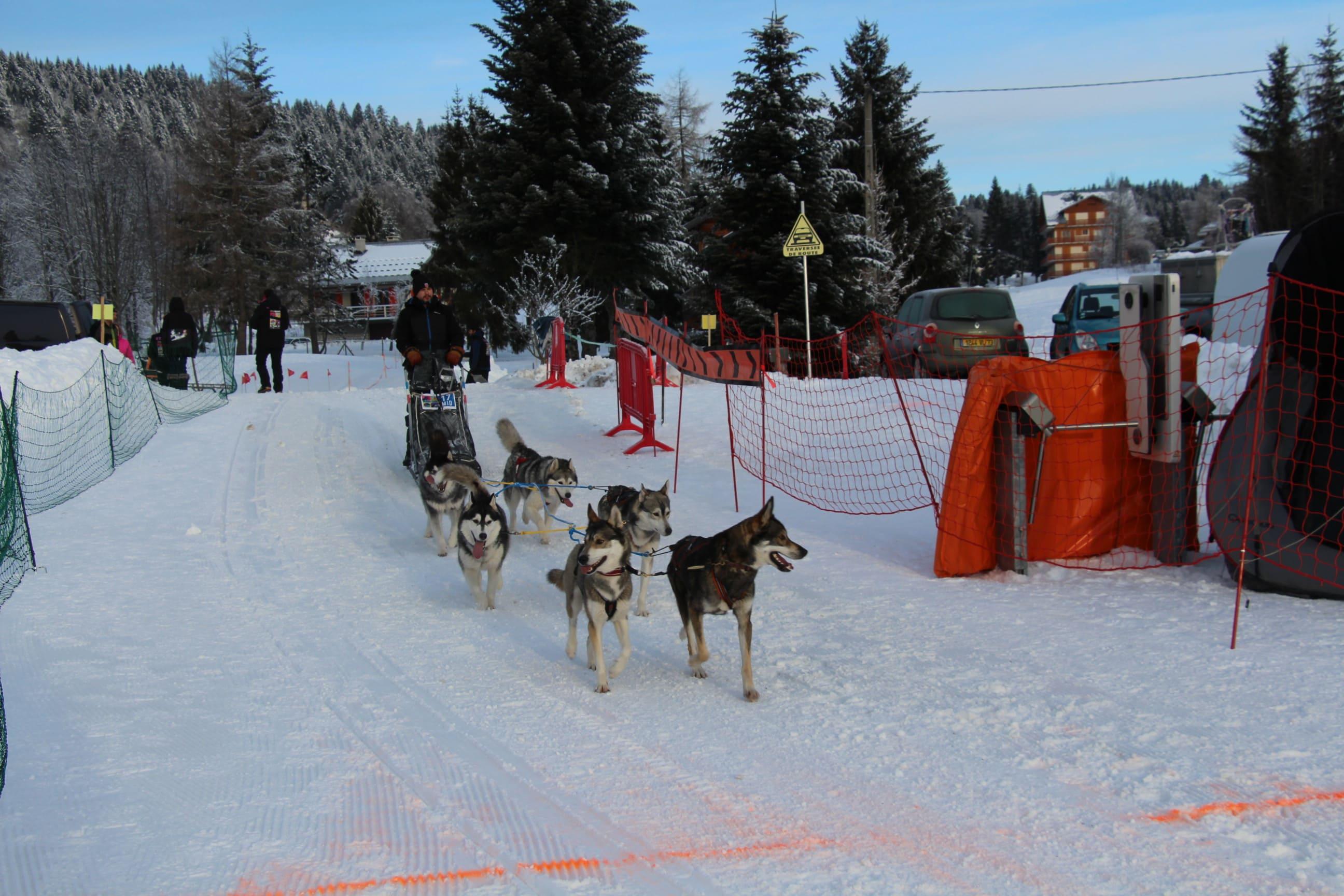 Snowland 2020 LQ (167)