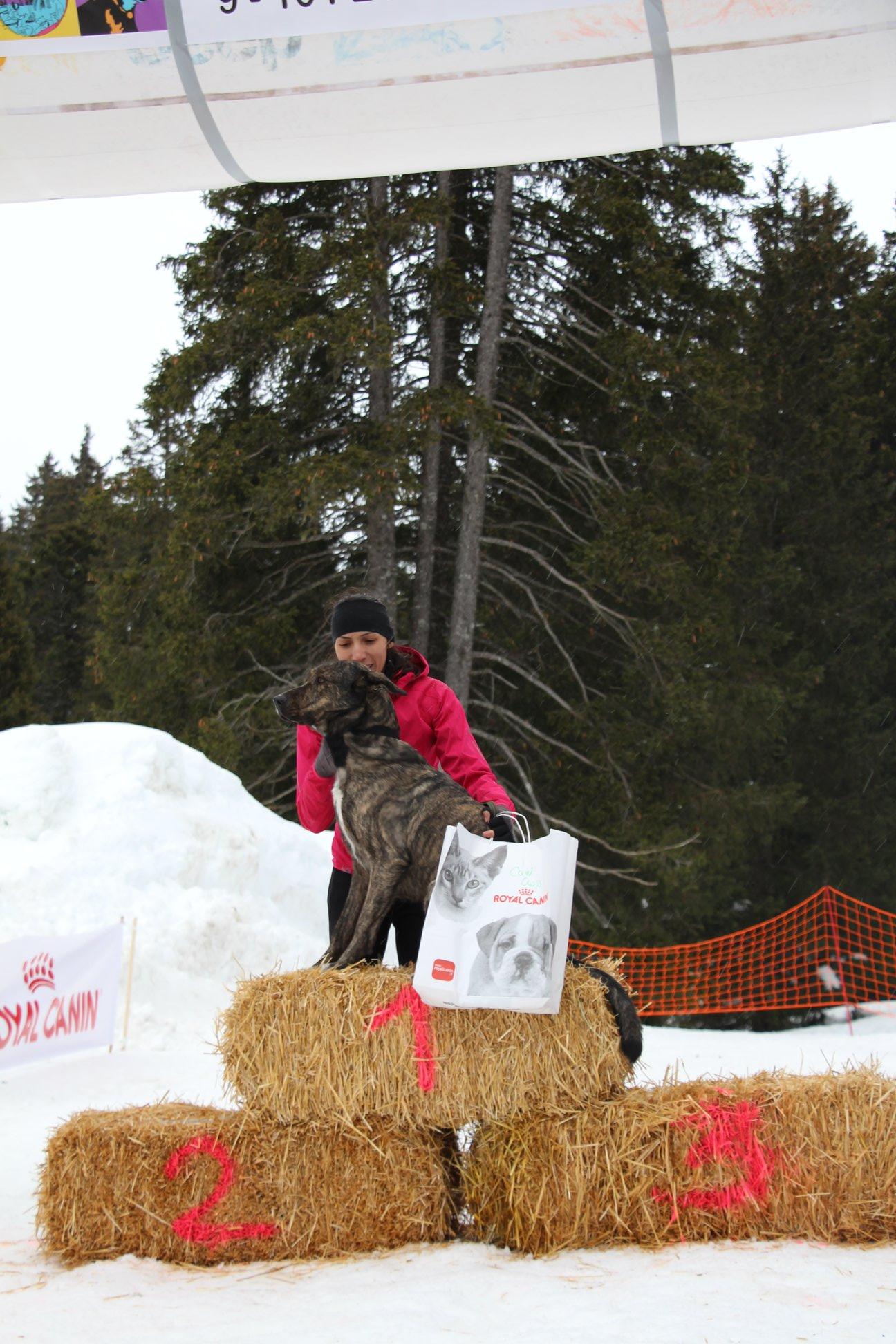 Snowland-2019-LQ 199