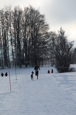 Snowland 2020 LQ (264)