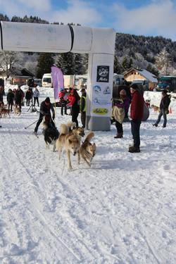 Snowland 2020 LQ (102)