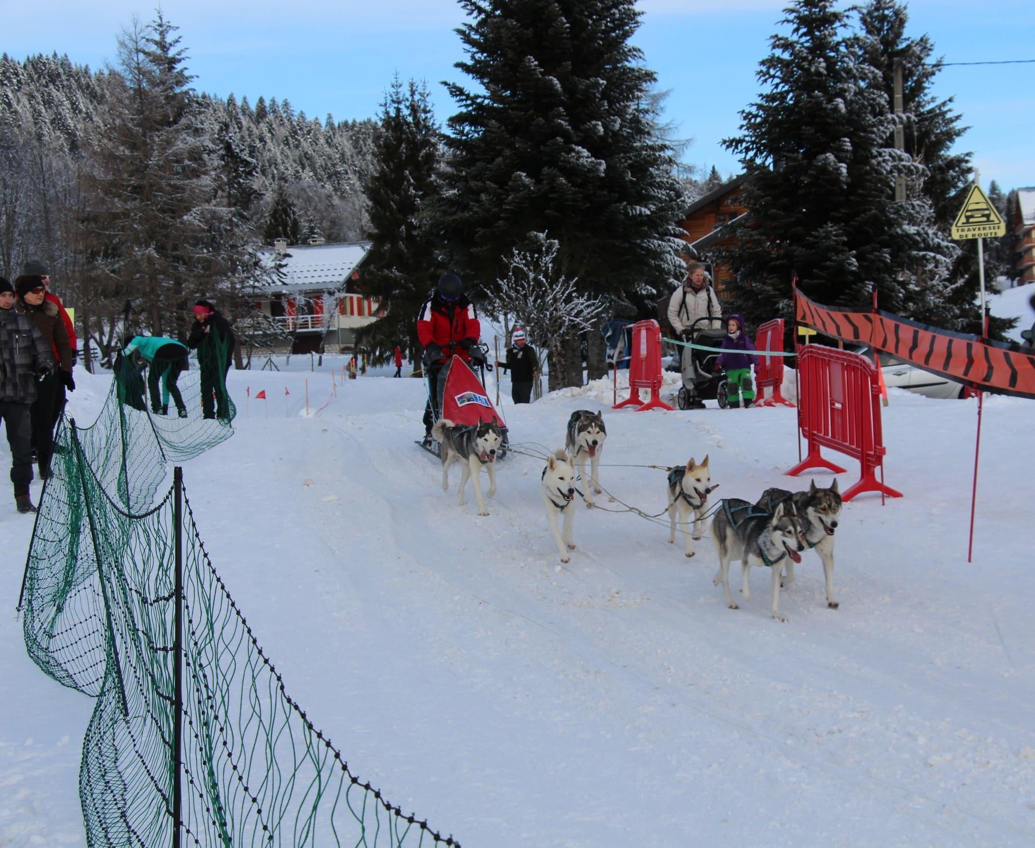 Snowland 2020 LQ (198)