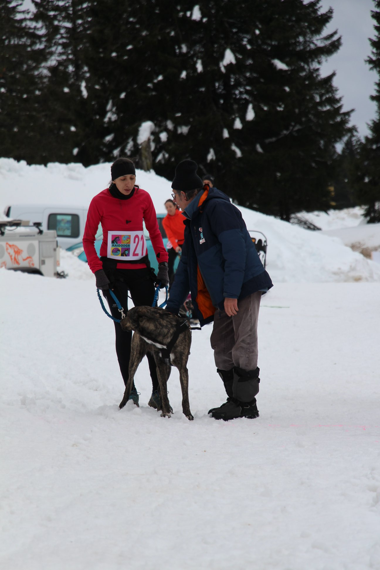 Snowland-2019-LQ 123