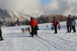 Snowland 2020 LQ (54)
