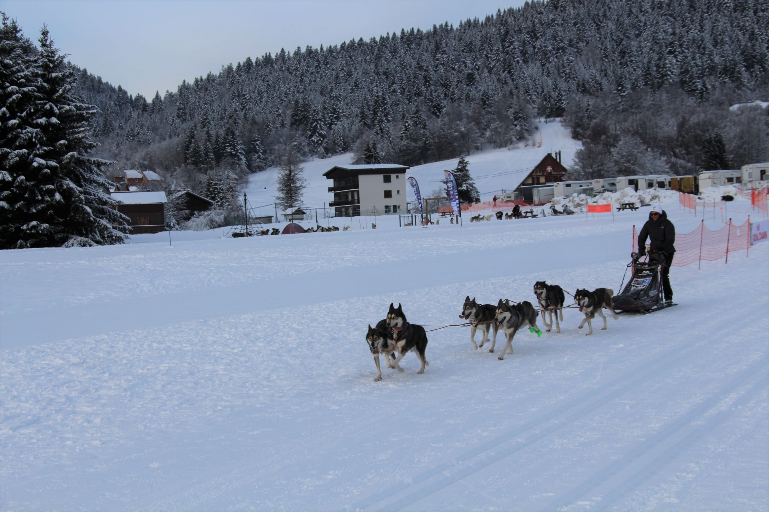 Snowland 2020 LQ (168)