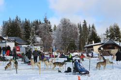 Snowland 2020 LQ (46)