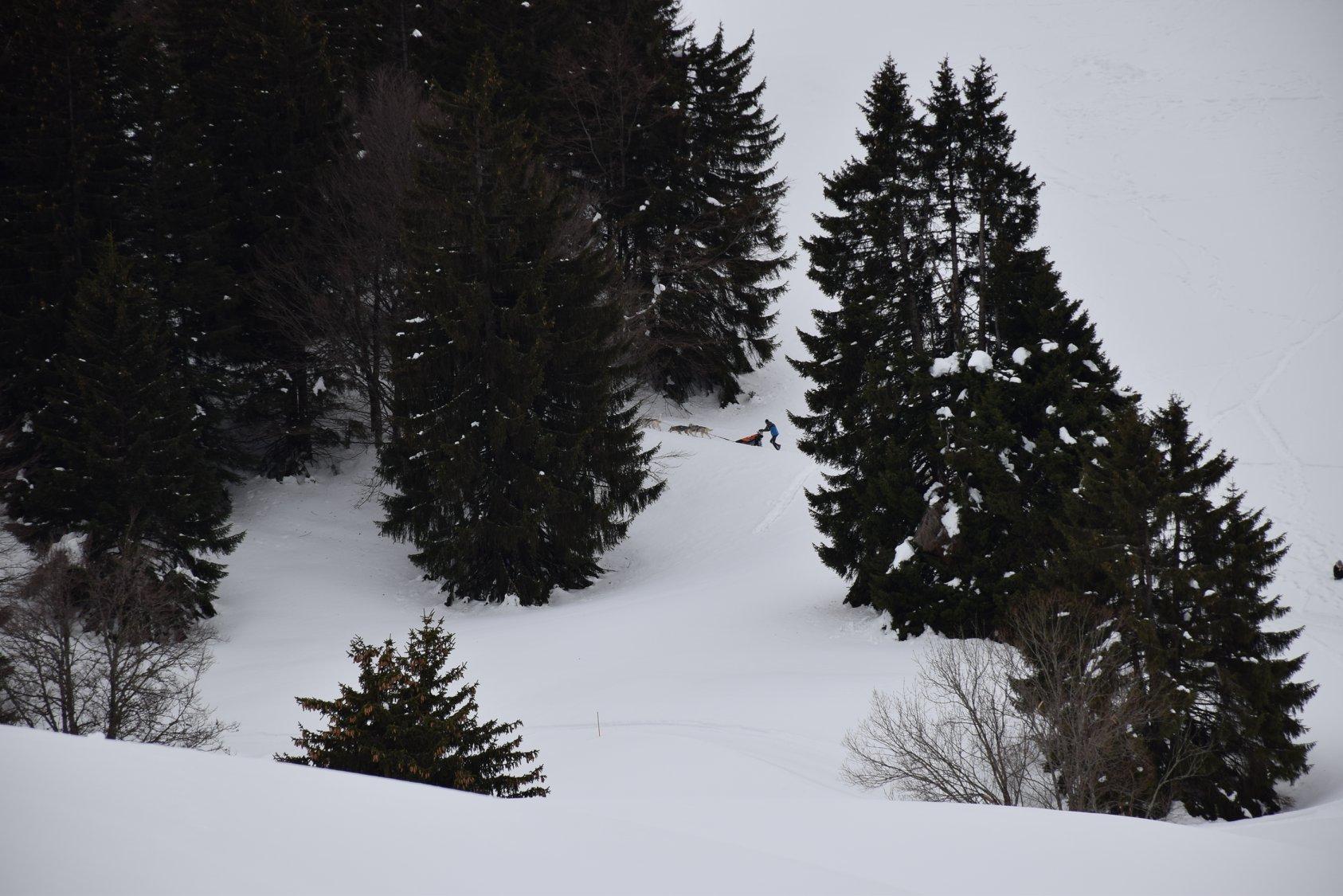 Snowland-2019-LQ 034