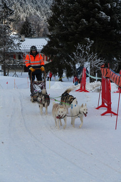 Snowland 2020 LQ (253)