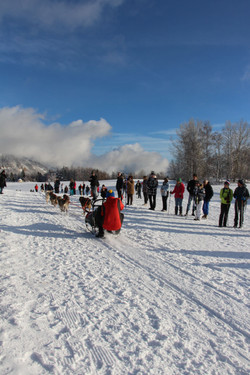 Snowland 2020 LQ (113)