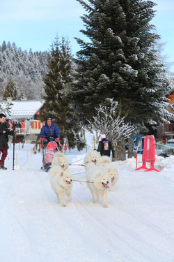 Snowland 2020 LQ (204)
