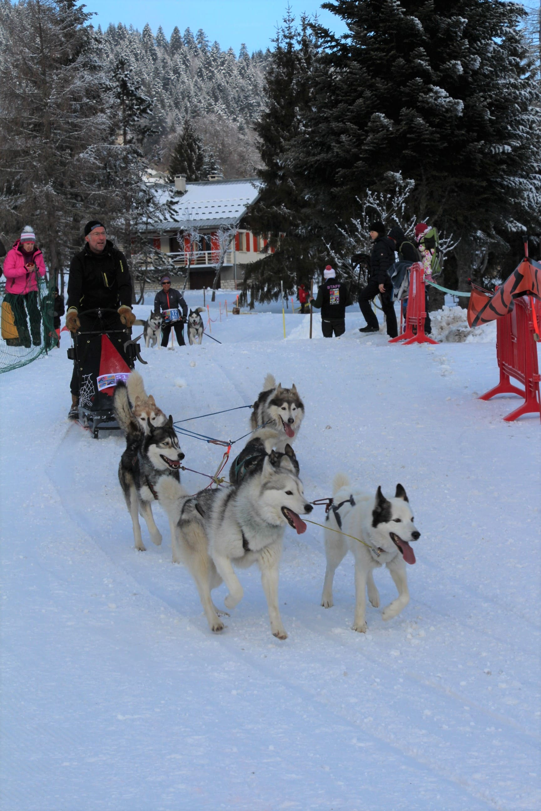 Snowland 2020 LQ (211)