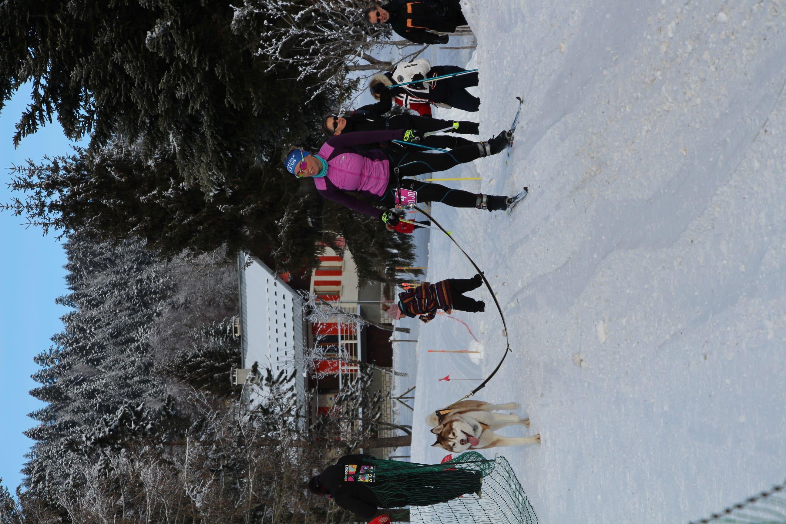 Snowland 2020 LQ (210)