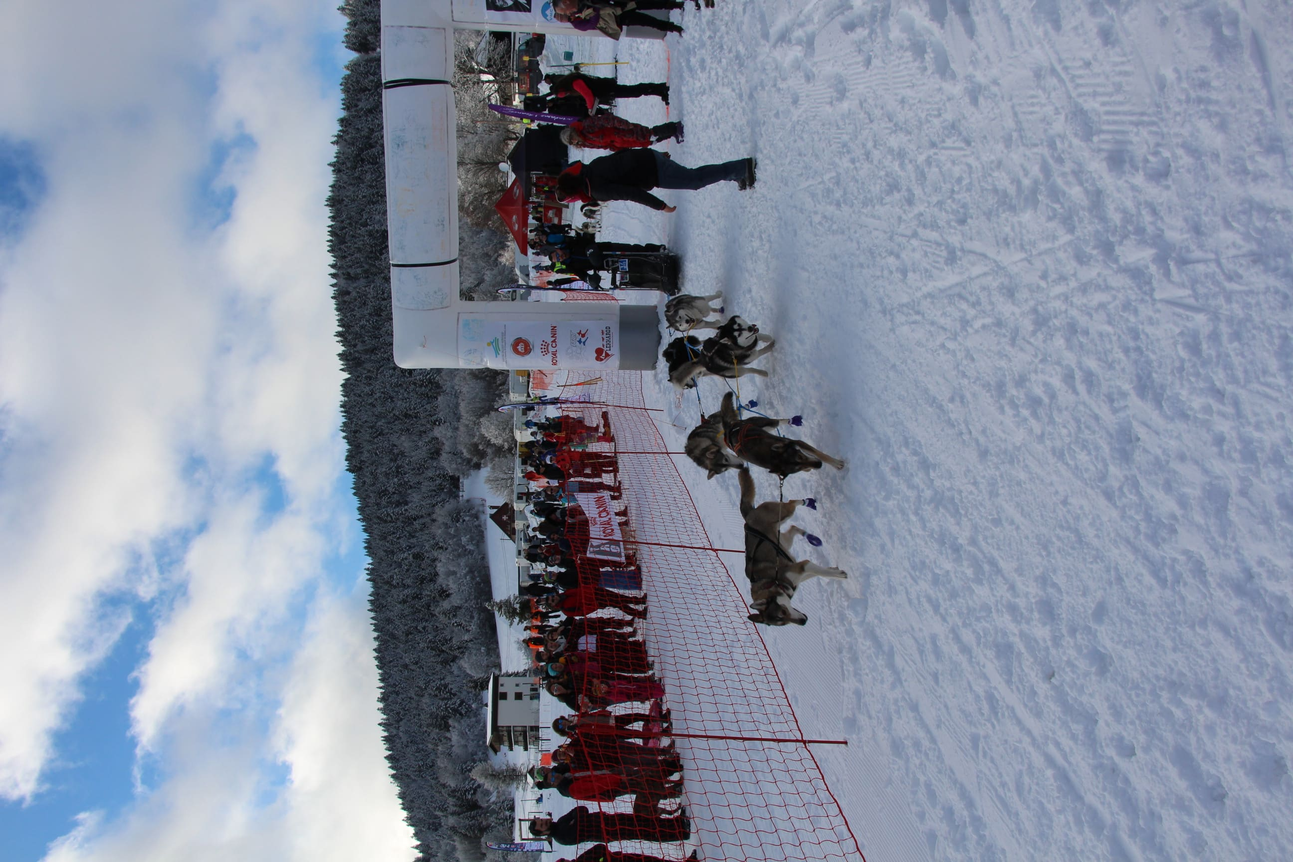 Snowland 2020 LQ (92)