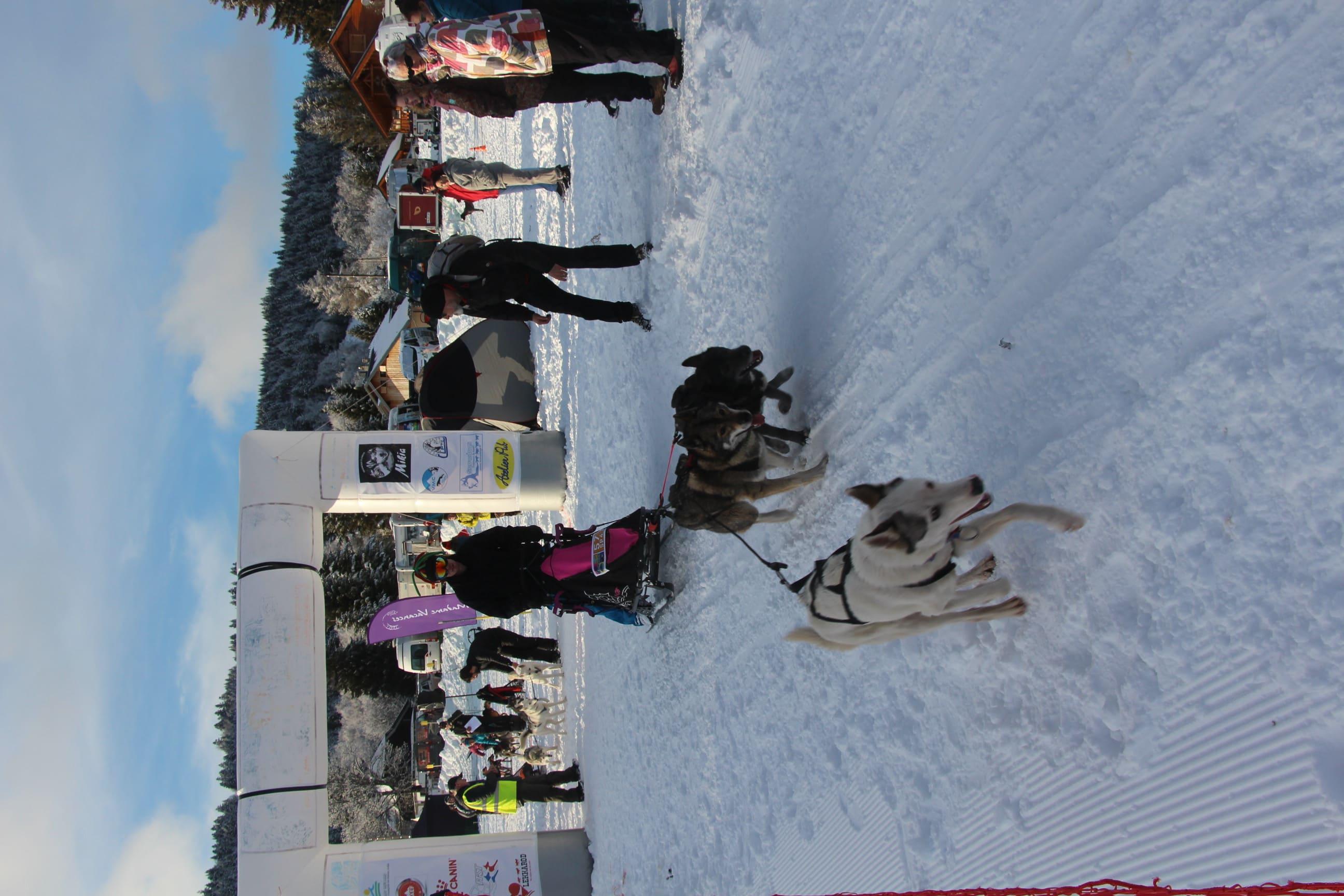Snowland 2020 LQ (146)
