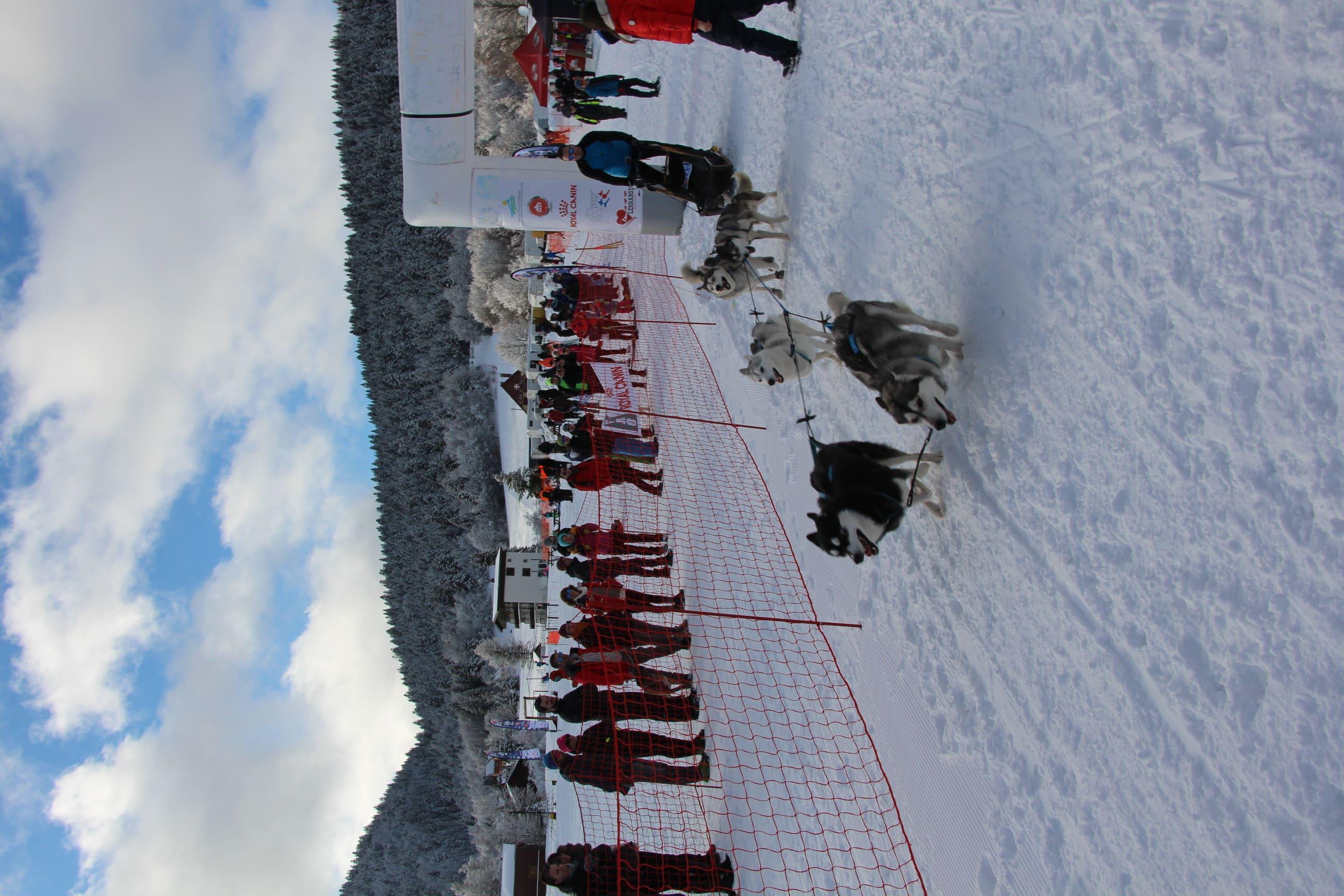 Snowland 2020 LQ (96)
