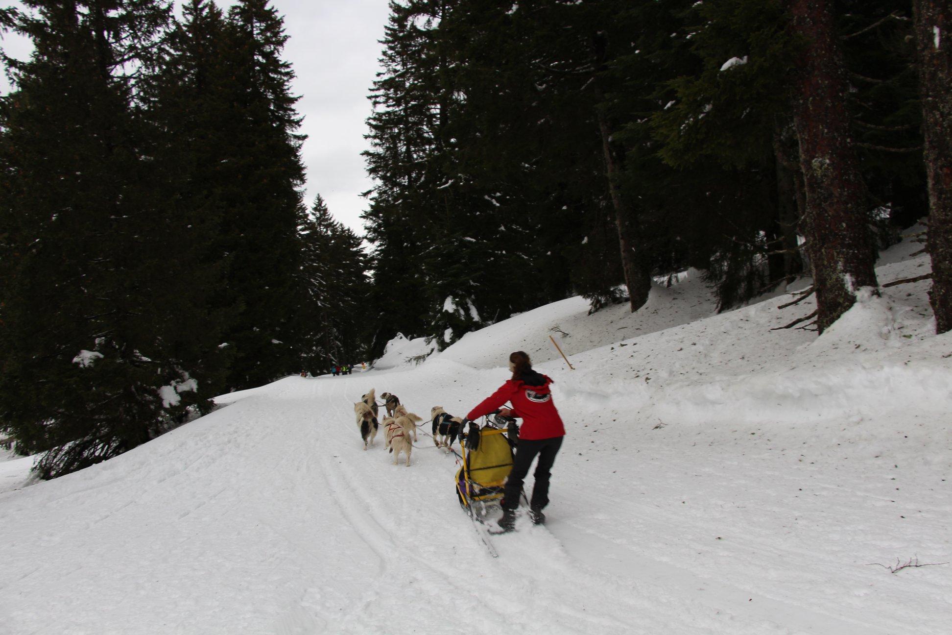 Snowland-2019-LQ 126