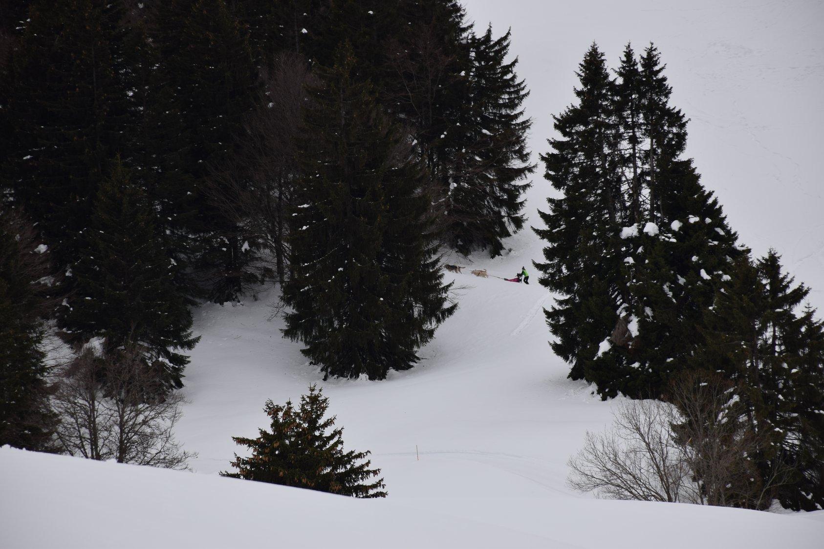 Snowland-2019-LQ 080
