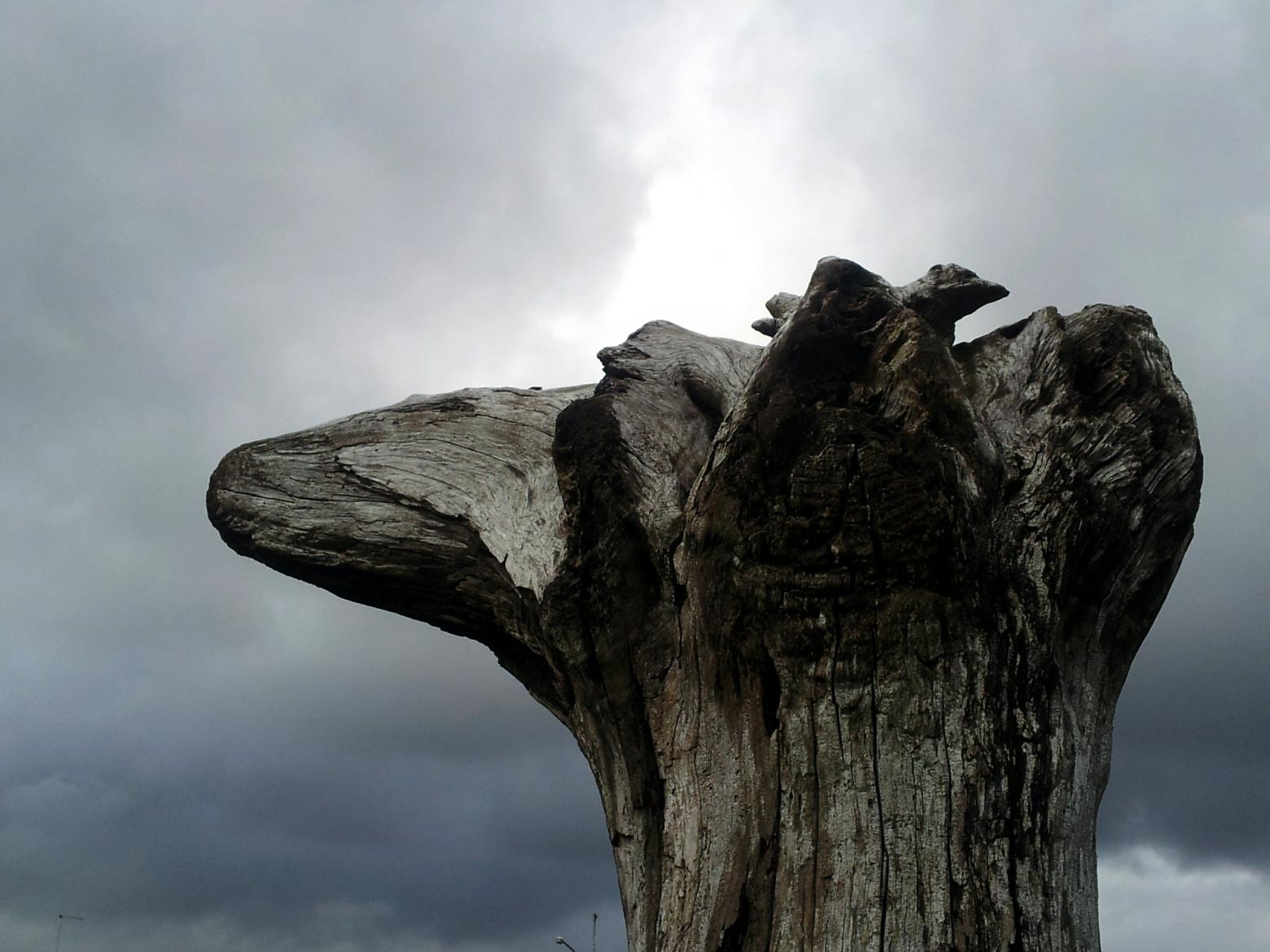 Sá ábúðarmikli