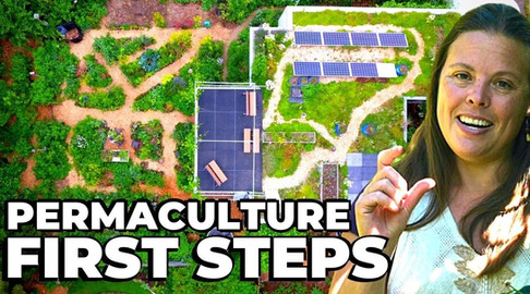 Permaculture First Steps