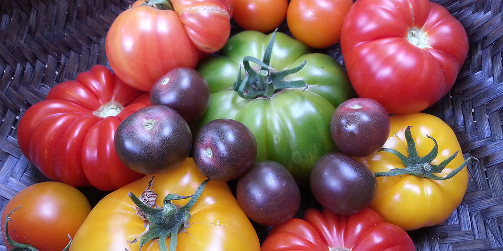 May:  Warm Season Crops, Edible Flowers, & Attracting Pollinators