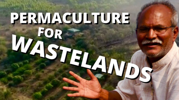 Permaculture for Wastelands