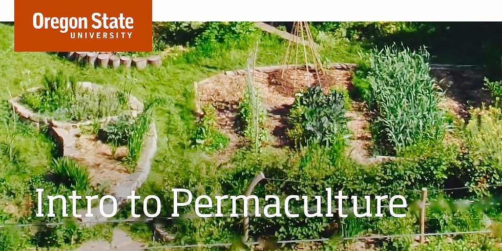 Free! Introduction to Permaculture Online Class