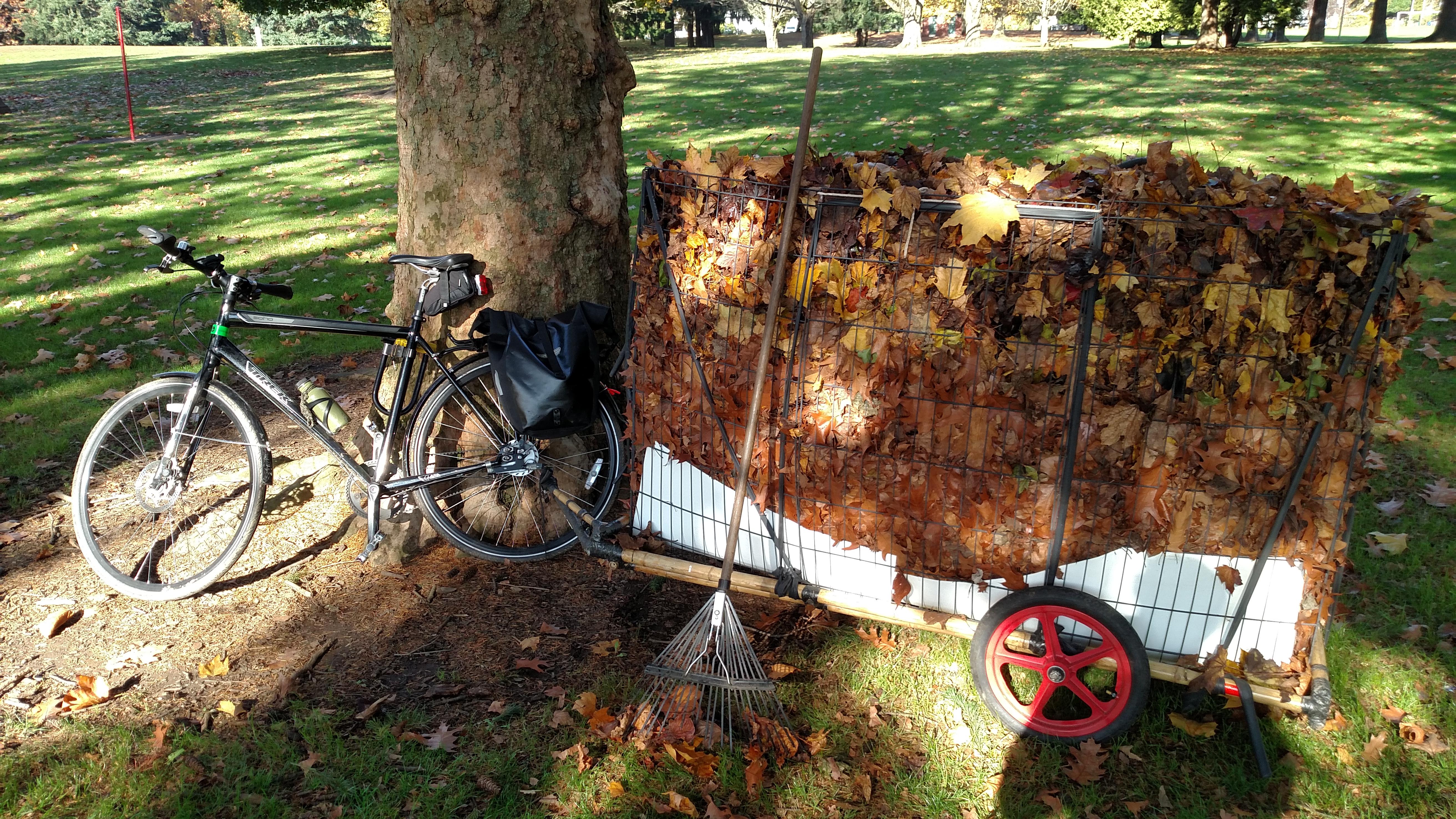 leaves in bike trailer 2