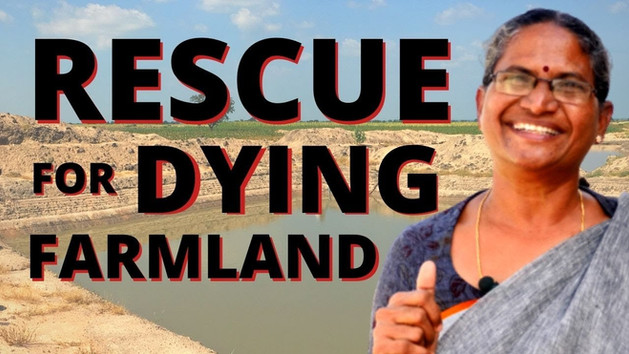 Rescue Dying Farmland