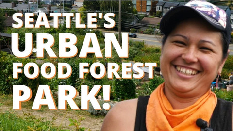 Seattle's Urban Food Forest Park