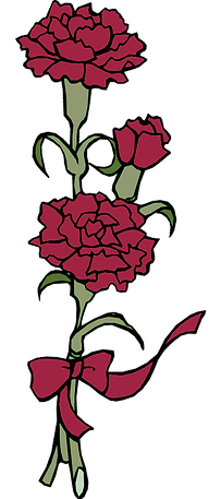 red-carnation.png