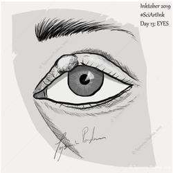 #13 Eyes